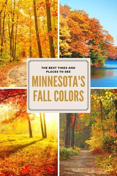 Plan out your fall color viewing & don't miss the best times and places to see f. - Plan out your fall color viewing & don't miss the best times and places to see fall colors in Min - Minnesota Camping, Duluth Minnesota, Bloomington Minnesota, Camping Activities For Kids, Whitewater Kayaking, Canoeing, Canoe Trip, Cool Places To Visit, Day Trips