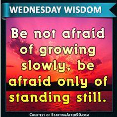 Wednesday Wisdom 106