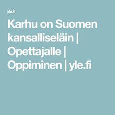 Karhu on Suomen kansalliseläin Finland, Science, Tieto, School Stuff, Historia, School Supplies, Science Comics