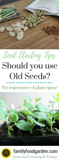 Don't just use your Old Germinated Seeds