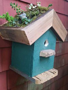 Bird House Planter