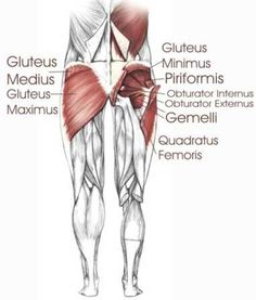 Hip Stretches - It is common to develop muscle imbalances around the hip