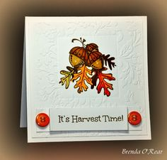 WT547-Make a card using your favorite season. While I do love Fall with beautiful leaves, football, pumpkins, etc.,  summer is my favorite season. But, I need a Fall cards so I hope I don't hear a knock on my door....challenge police!!!  I used Darice Easy Frames to leave an area not embossed so I could stamp my image. I colored with Copics, added a sentiment and buttons...all finished.