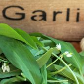 OO&L Wild Garlic Bread
