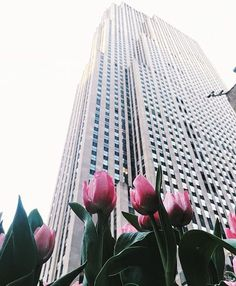 """716 Likes, 5 Comments - Free People New York City (@fpnewyorkcity) on Instagram: """"Spring looks lovely on you New York!!  Come shop with us in Rock Center today! ✨ #fpnyc  @gmp3"""""""