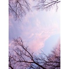 Our Hopes and Expectations ❤ liked on Polyvore featuring backgrounds, pictures, photos, purple, fillers, effects, wallpaper, text, saying and quotes