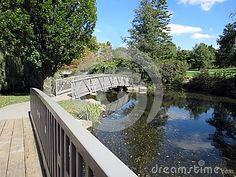 Footbridges over a river on a sunny, early Fall day.