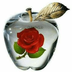 My Dad collected glass apples.First pin I aw this morning! Beautiful Rose Flowers, Flowers Gif, Love Rose, Amazing Flowers, Beautiful Love Pictures, Love You Gif, Rose Images, Glass Paperweights, Flower Wallpaper