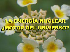 LA ENERGÍA SOLAR ¿MOTOR DEL UNIVERSO?