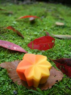 茶席上生菓子『紅葉狩り』 : 本日も和菓子日和です