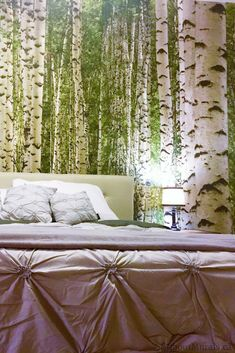 Watch this birch wallpaper on CHCH TV and see it on real customer's walls. The removable wallpaper is an easy DIY project that quickly transforms a room. Birch Tree Mural, Birch Tree Wallpaper, Forest Wallpaper, Photo Wallpaper, Birch Forest, Bedroom Green, Green Man, Easy Diy Projects, Interior Ideas