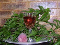 Vin de pêche : Recette de Vin de pêche - Marmiton