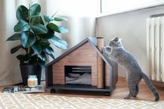 Best bed linens for your home Joy Of Living, Cat Cave, Cat Room, Pet Furniture, Dog Houses, Wood Veneer, Dog Cat, Home, Terrace Design