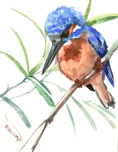 Common Kingfisher, 10 X 8 in, original watercolor painting