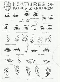 noses - Art References