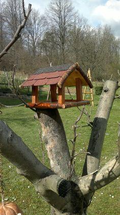 Niečo pre vtáčiky :-)