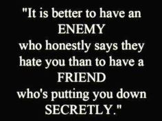 Wow! I guess I have something in common with this quote. Per the aquatint that is friends with people that don't like me.     Yep, better to have an enemy than a back stabbing bitch for a friend.