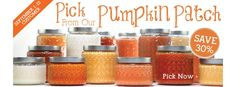 Gold Canyon scented candles, jar candles, wickless and flameless scents, candle holders and more. See our specials! Scented Candles, Candle Jars, Candle Holders, Pumpkin Bread, A Pumpkin, Gold Canyon Candles, I Love Gold, Spice Cookies, White Pumpkins
