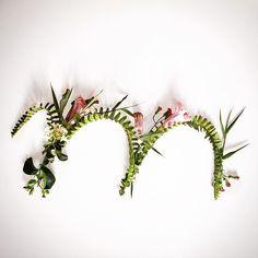 Colhendo letras do jardim | letter M by Renato Cardoso