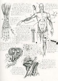 Frankenstein Book, The Modern Prometheus, Assurance Vie, Anatomy Art, Dnd Characters, Outdoor Art, The Villain, Animal Design, Illustrations