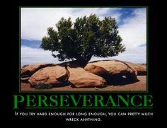 Perseverance - Imgur
