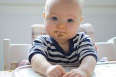 Pienikin vauva osaa syödä omin sormin.Maxin ollessa noin 7 kuukauden ikäinen mieheni Matti huomasi, että Max söi paremmin sosetta saadessaan ensin...