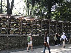 sake in 明治神宮