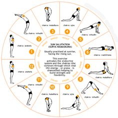 Simple Yoga Routine for Beginners   common morning Yoga routine is the Sun Salutation show step by step ...