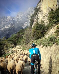 "Chris Froome on Instagram: ""The Col de la Madone is a little busy today! """