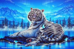 White Tiger - Art of Kentaro Nishino