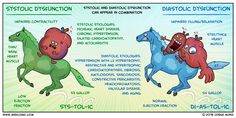 Systolic vs Diastolic Dysfunction via Medcomic Med Surg Nursing, Cardiac Nursing, Nursing Labs, Right Sided Heart Failure, Stages Of Heart Failure, Heart Failure Symptoms, Systolic Heart Failure, Ischemic Heart Disease, Medical Mnemonics