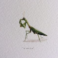 Illustrator Creates One Mini Painting Per Day For A Year - Lorraine Loots