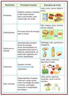 Alimentação Equilibrada Atividades de Ciências Human Body Anatomy, Sistema Solar, Healthy Eating Habits, Science, Social Studies, Homeschool, Nutrition, Teaching, Education