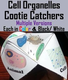 Cell Organelles: These cell organelles cootie catchers are a great way for students to have fun while learning about cell organelles. Playing directions and folding Directions (with pictures) are Included. There are 3 different versions, each in color Science Cells, Science Biology, Life Science, Cell Biology, Science Resources, Science Lessons, Science Education, Biology Lessons, Teaching Cells
