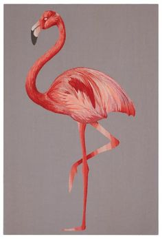 Flamingo SUZY HOODLESS Wallhanging collection for The Rug Company <3