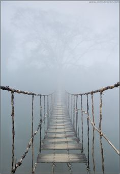 Rope Bridge by Dima Zverev, Photography, Digital - - Vietnam. Rope Bridge by Dima Zverev, Photography, Digital Oh the places I will go Vietnam Rope Bridge, All Nature, To Infinity And Beyond, Land Art, Abandoned Places, Pathways, Belle Photo, Mists, Beautiful Places