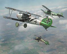 Mark Miller\'s 3-D Albatros D.Va