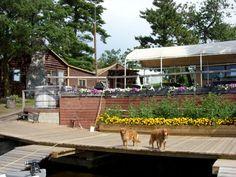 Lake Of The Woods Lodge (Nestor Falls, Ontario) - Resort Reviews - ResortsandLodges.com