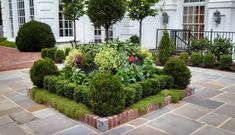 landscape plan for front yards - Continental Style
