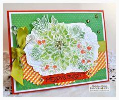 Poinsettia   Power Poppy by Marcella Hawley