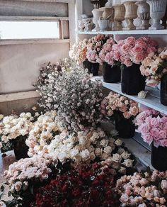 Never too many flowers May Flowers, Wild Flowers, Beautiful Flowers, No Rain, Flower Aesthetic, Jolie Photo, Planting Flowers, Flower Arrangements, Wedding Flowers