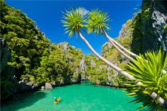 Small lagoon in Bacuit Bay in El Nido, Palawan, Philippines. According to the Palawan Diver's organization, the crystal clear waters of Palawan are home to 120 species of coral reef, 800 species of exotic fish and it's known to have sunken shipwrecks, making this the ultimate scuba diving destination. Kayaking and snorkeling are also popular activities here thanks to the abundant native marine and animal life that occupies the land.