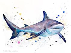 Gray Reef Shark Watercolor Print by Slaveika Aladjova Art Watercolor Ocean, Watercolor Animals, Watercolor Print, Watercolor Paintings, Painting Prints, Watercolor Tattoos, Illustrations, Animal Paintings, Nature