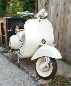 1955 Vespa