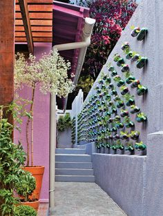 Designer Marcelo Rosenbaum, São Paulo, Brazil, created this vertical vegetable garden: dozens of plastic bottles are filled with soil ~ then herbs & plants are added. Make small holes on one side of each bottle for the water flow.
