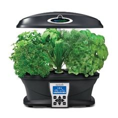 An indoor herb garden that grows herbs five times faster than soil. d'autres gadgets ici : http://amzn.to/2kWxdPn http://amzn.to/2tmP4iT