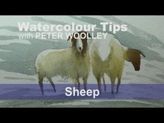 Speed Watercolour Painting How To Paint Sheep In Winter Snow Tips & Techniques - YouTube