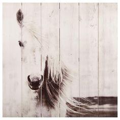 Art mural en bois - Cheval blanc