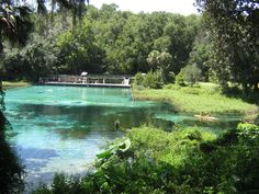 One of the most attractive Florida State Parks Rainbow Springs is located few miles from Dunnellon - small town in West Central Florida. Spread on large area on the banks of Rainbow river, park offers excellent environment for vacation or a weekend in the nature
