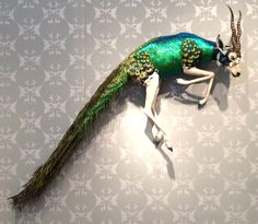 Insanely imaginative feather-covered taxidermy by Enriquez Gomez Fantasy Creatures, Mythical Creatures, Bad Taxidermy, Taxidermy Display, Taxidermy Decor, Tattoo Studio, Animal Bones, Arte Horror, World Of Interiors